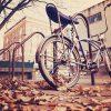 車輪のように回るエコシステム「バイクシェアリング」って?